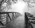 bridge-740x493
